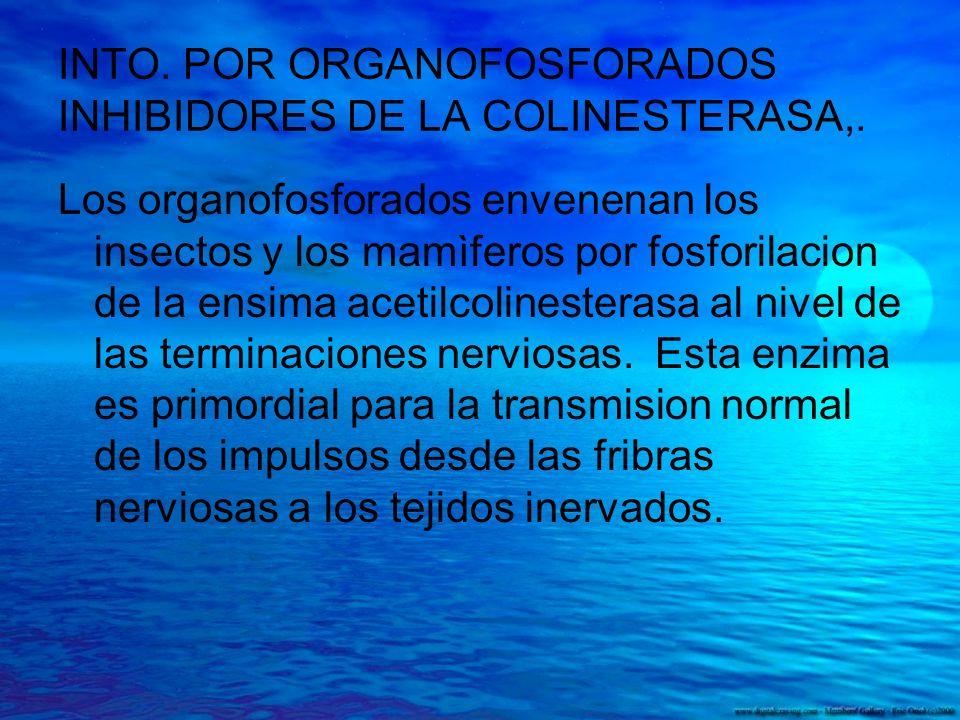 INTO. POR ORGANOFOSFORADOS INHIBIDORES DE LA COLINESTERASA,. Los organofosforados envenenan los insectos y los mamìferos por fosforilacion de la ensim