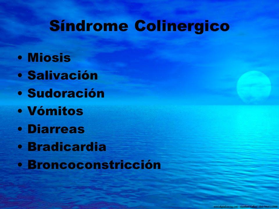 Síndrome Colinergico Miosis Salivación Sudoración Vómitos Diarreas Bradicardia Broncoconstricción