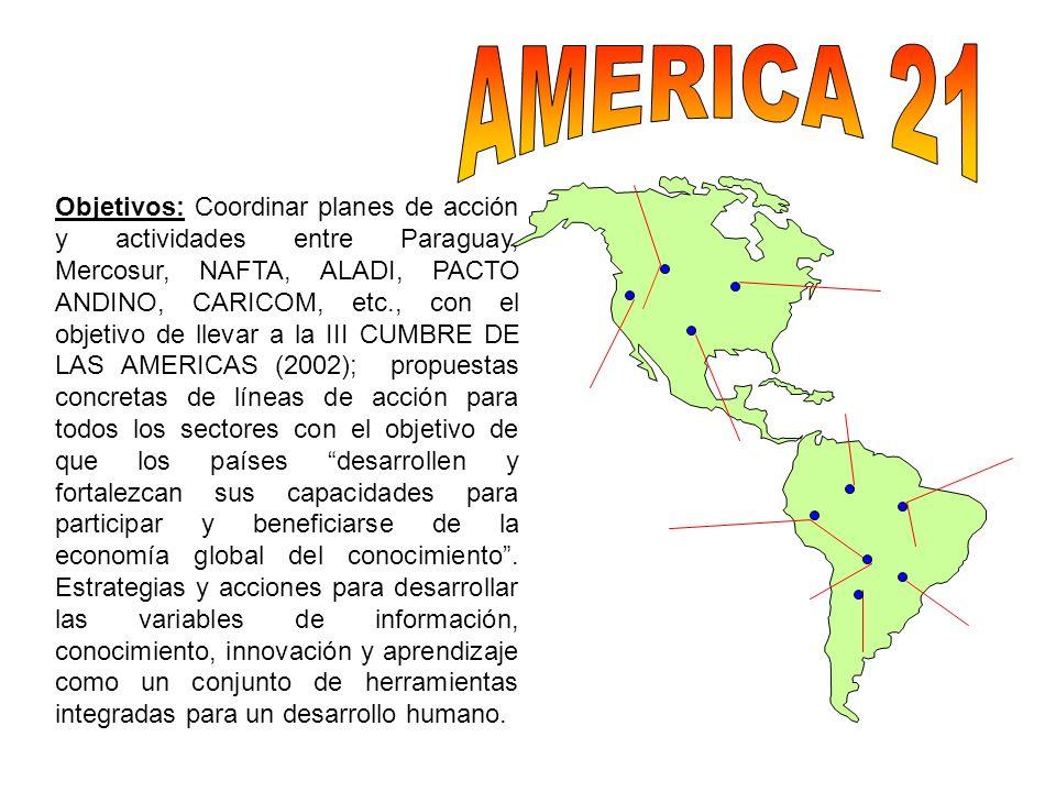 Objetivos: Coordinar planes de acción y actividades entre Paraguay, Mercosur, NAFTA, ALADI, PACTO ANDINO, CARICOM, etc., con el objetivo de llevar a l