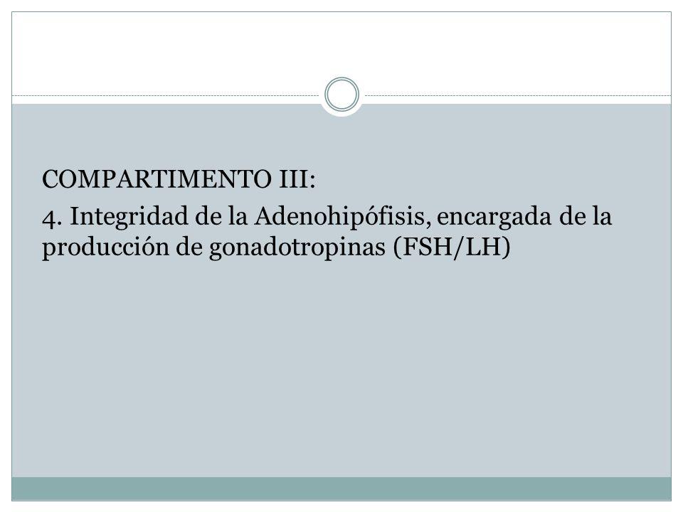 COMPARTIMENTO III: 4. Integridad de la Adenohipófisis, encargada de la producción de gonadotropinas (FSH/LH)