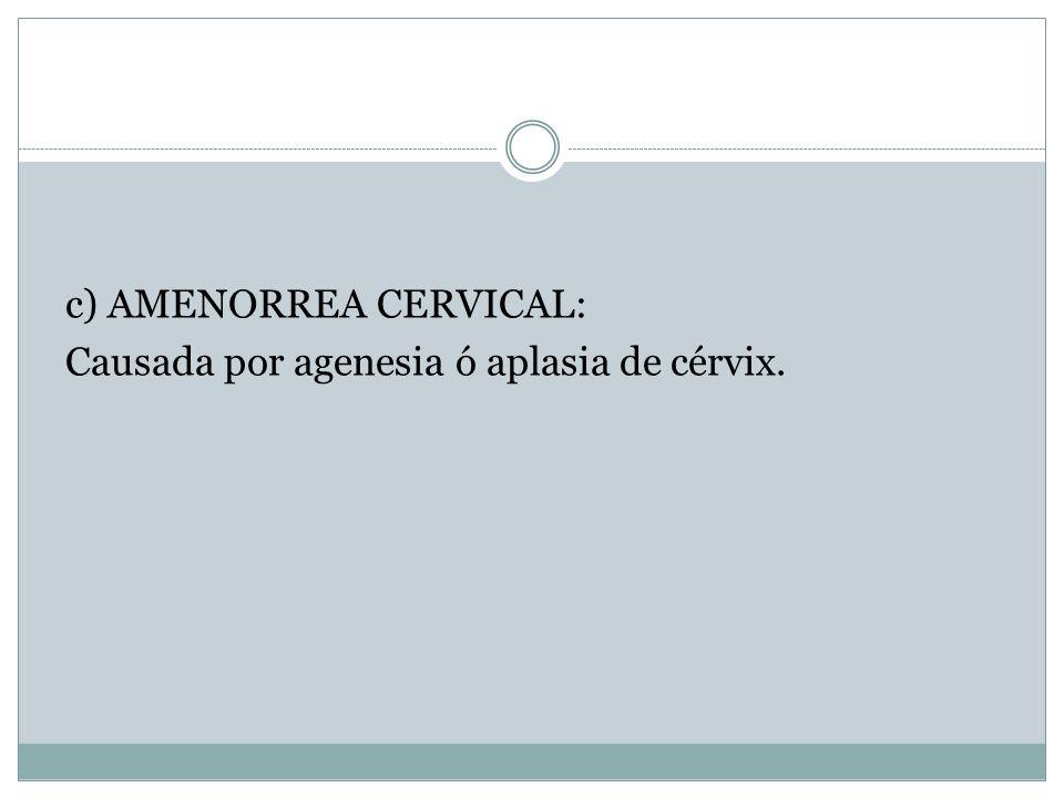 c) AMENORREA CERVICAL: Causada por agenesia ó aplasia de cérvix.