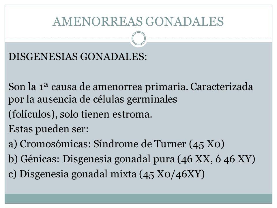 AMENORREAS GONADALES DISGENESIAS GONADALES: Son la 1ª causa de amenorrea primaria. Caracterizada por la ausencia de células germinales (folículos), so