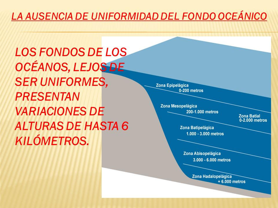 LOS FONDOS DE LOS OCÉANOS, LEJOS DE SER UNIFORMES, PRESENTAN VARIACIONES DE ALTURAS DE HASTA 6 KILÓMETROS. LA AUSENCIA DE UNIFORMIDAD DEL FONDO OCEÁNI