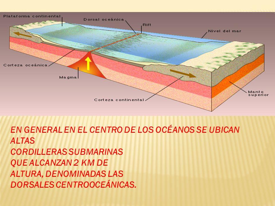 EN GENERAL EN EL CENTRO DE LOS OCÉANOS SE UBICAN ALTAS CORDILLERAS SUBMARINAS QUE ALCANZAN 2 KM DE ALTURA, DENOMINADAS LAS DORSALES CENTROOCEÁNICAS.