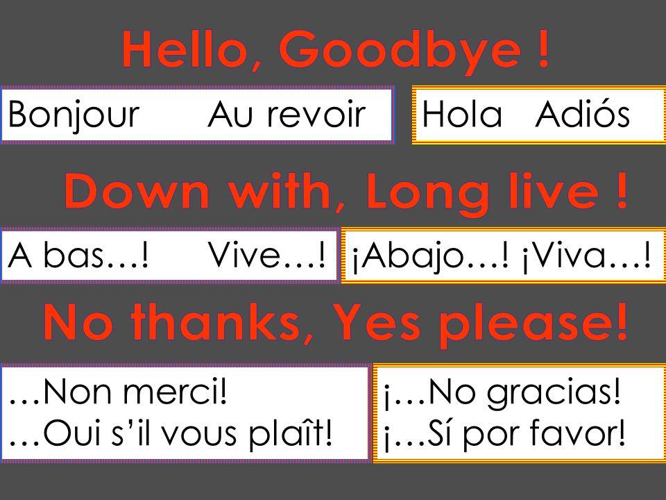 BonjourAu revoirHola Adiós A bas…!Vive…!¡Abajo…! ¡Viva…! …Non merci! …Oui sil vous plaît! ¡…No gracias! ¡…Sí por favor!
