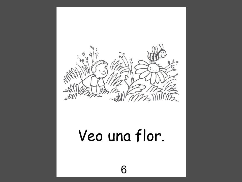 Veo una flor. 6