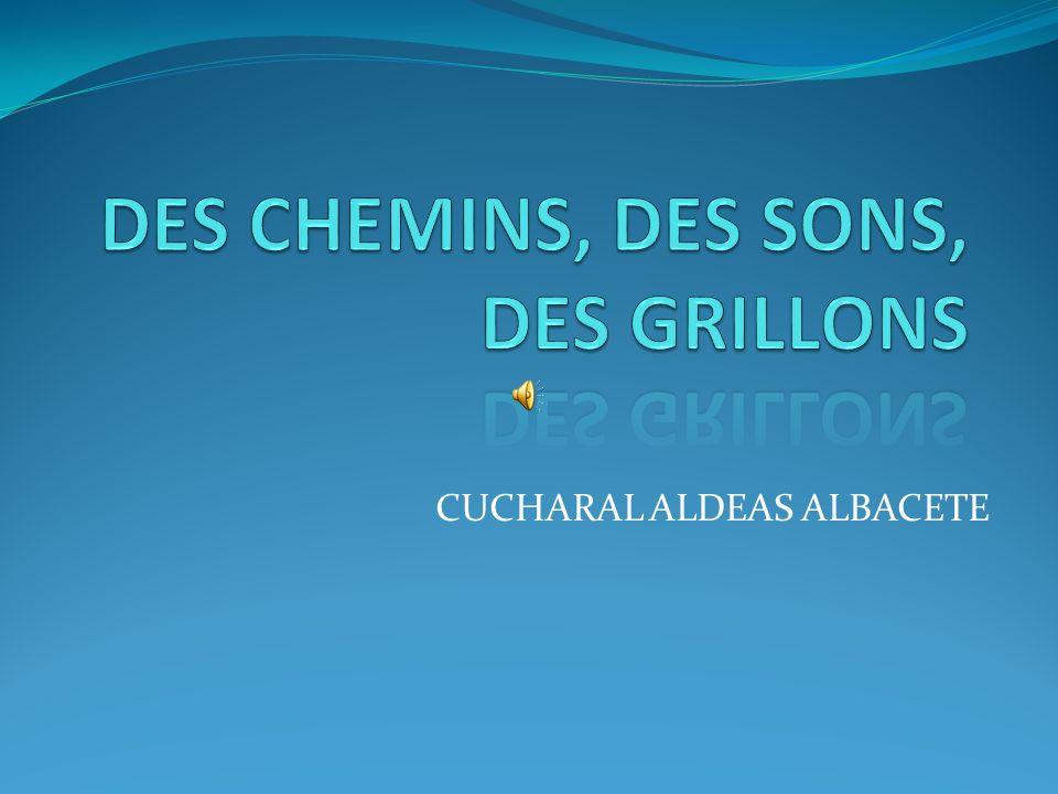 CUCHARAL ALDEAS ALBACETE