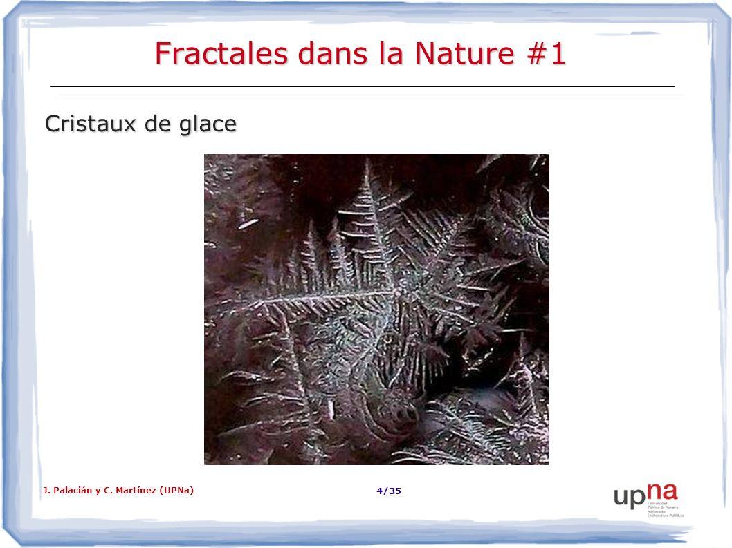 J. Palacián y C. Martínez (UPNa) 4/35 Fractales dans la Nature #1 Cristaux de glace