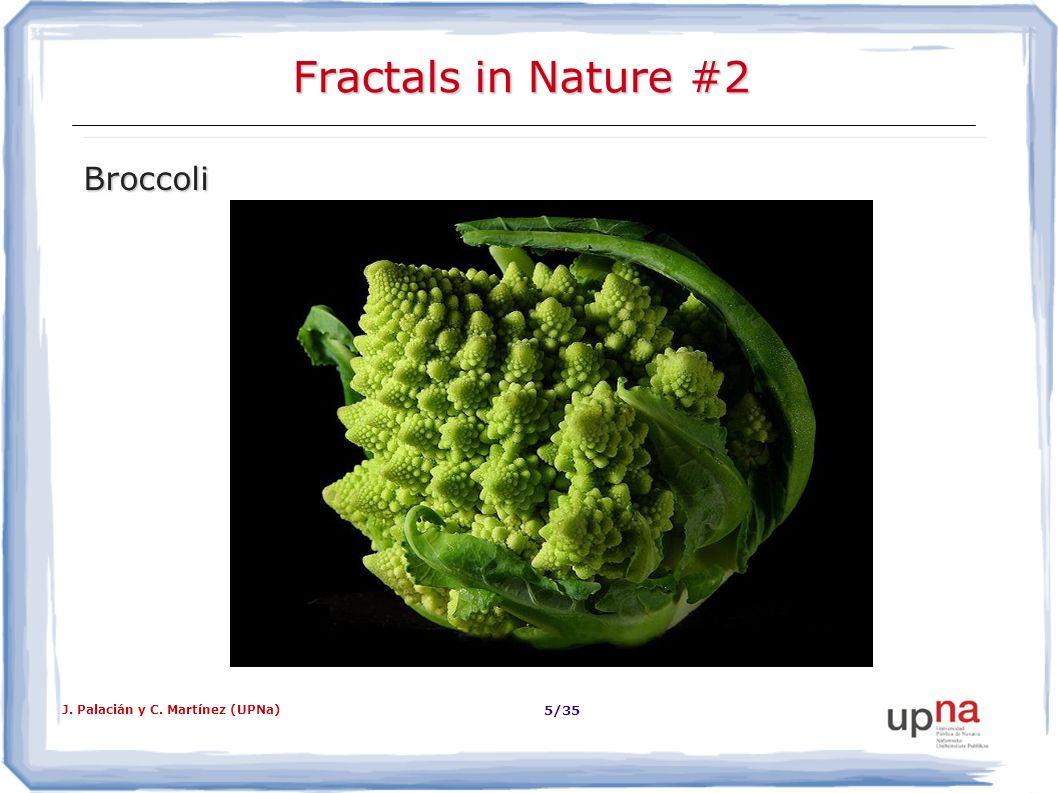 J. Palacián y C. Martínez (UPNa) 6/35 Fractals in Nature #3 Reals ferns