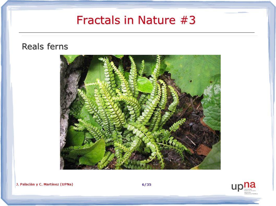 J. Palacián y C. Martínez (UPNa) 7/35 Fractales en la Naturaleza #4 Pavo real