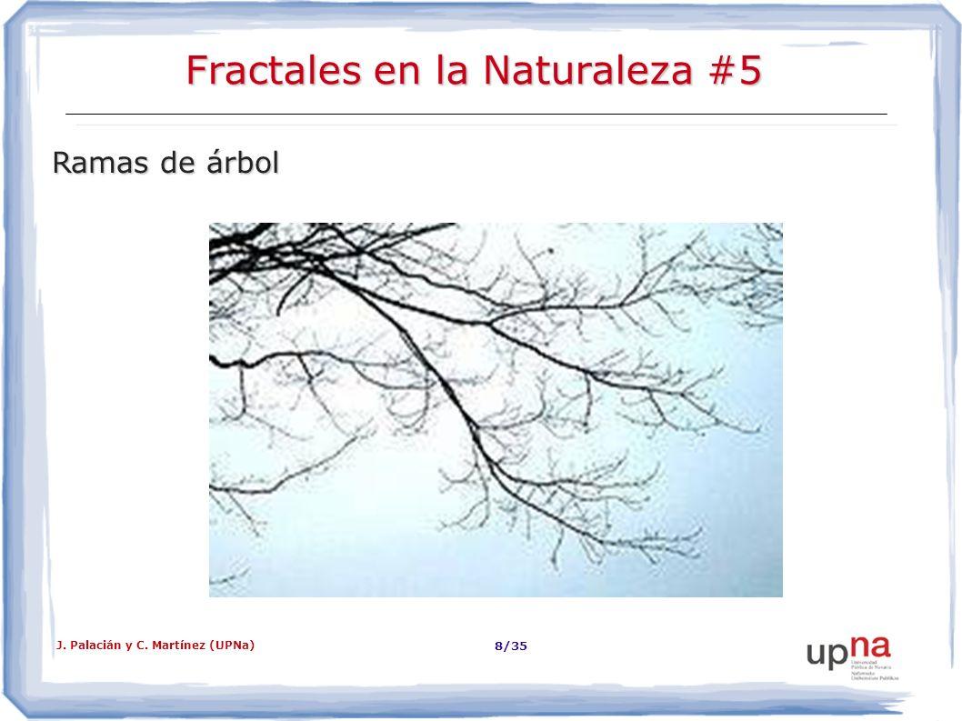 J. Palacián y C. Martínez (UPNa) 9/35 Fractales dans la Nature #6 Pierres