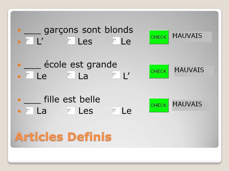Articles Indefinis ___ Un Une Des ___ Une Des Un ___ Des Un Une