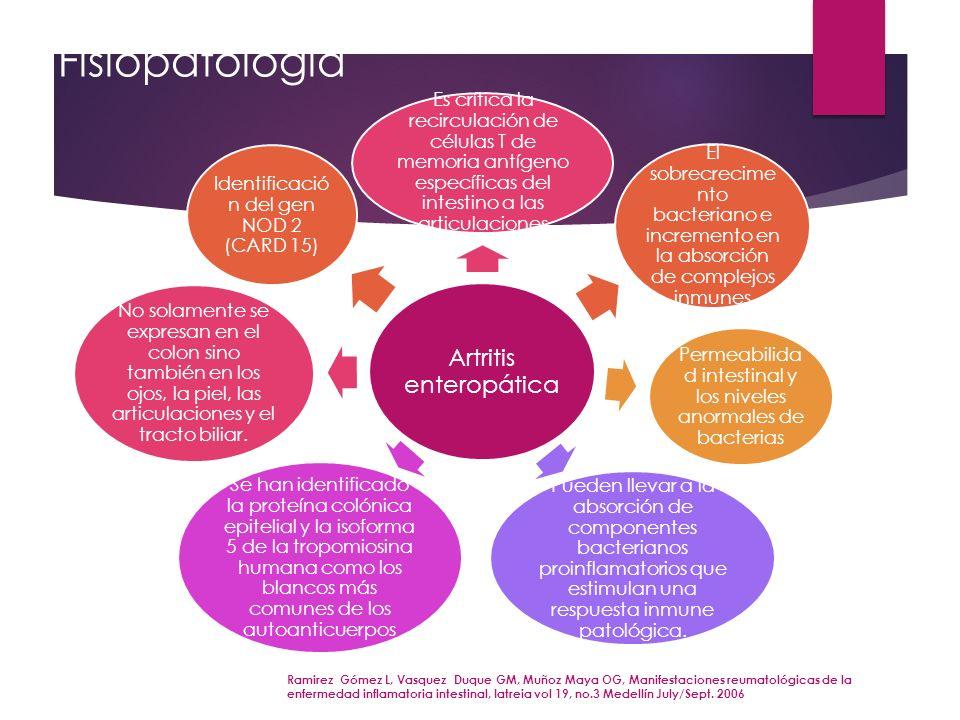 Fisiopatología Ramirez Gómez L, Vasquez Duque GM, Muñoz Maya OG, Manifestaciones reumatológicas de la enfermedad inflamatoria intestinal, Iatreia vol