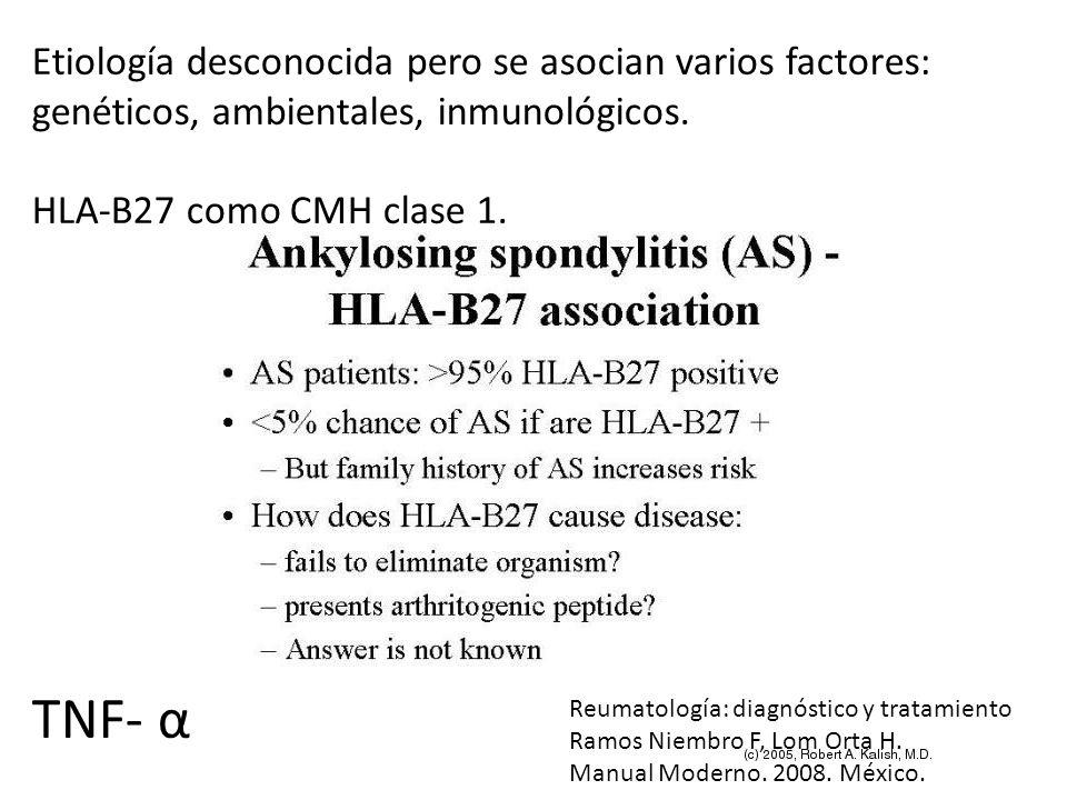 Etiología desconocida pero se asocian varios factores: genéticos, ambientales, inmunológicos. HLA-B27 como CMH clase 1. TNF- α Reumatología: diagnósti