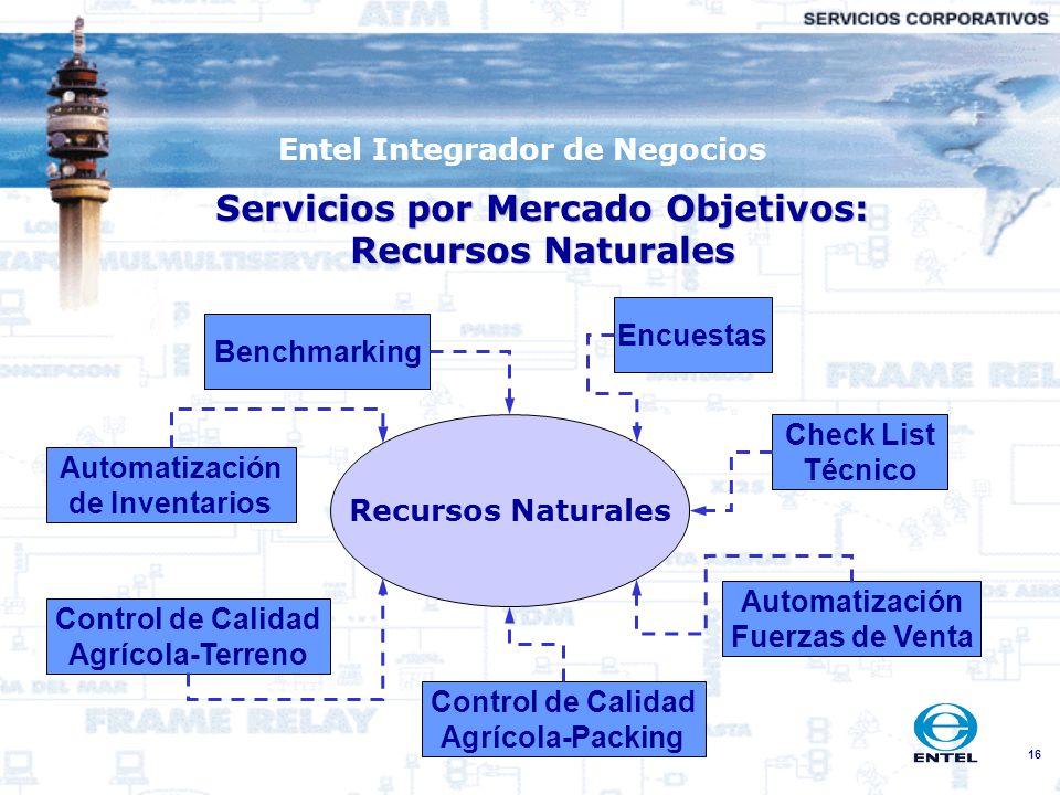 16 Entel Integrador de Negocios Servicios por Mercado Objetivos: Recursos Naturales Recursos Naturales Encuestas Check List Técnico Benchmarking Autom
