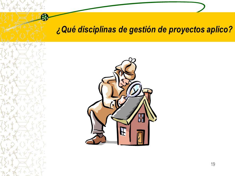 19 ¿Qué disciplinas de gestión de proyectos aplico?