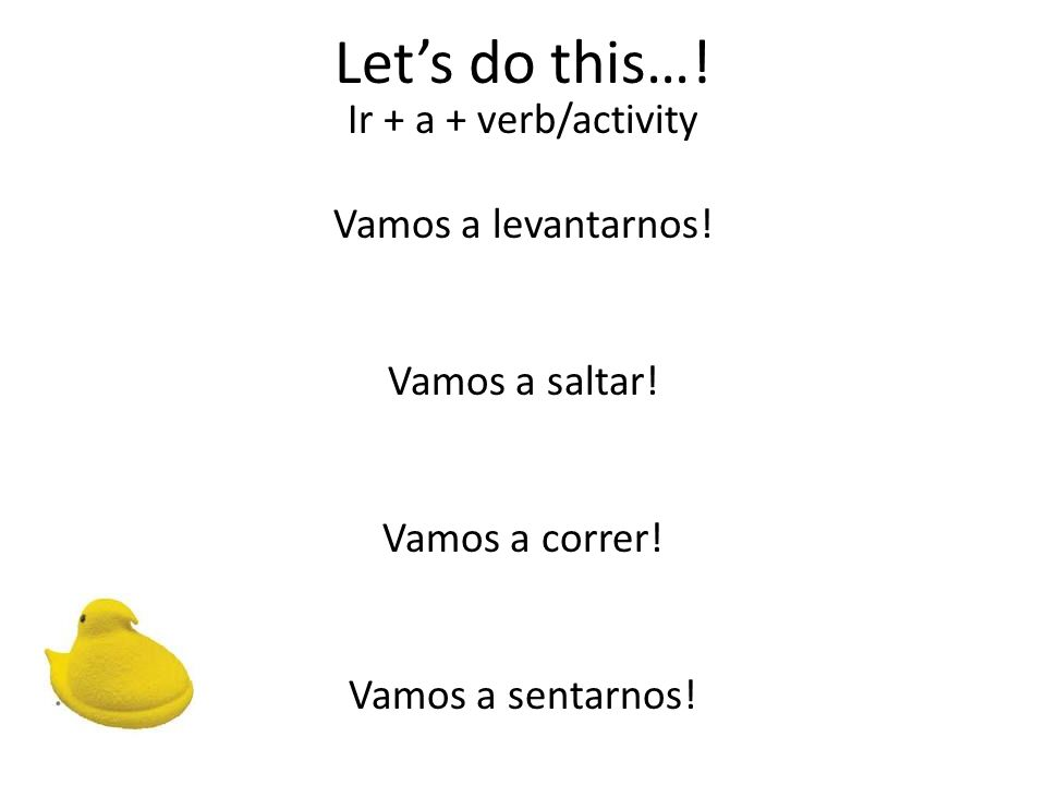 Lets do this…! Ir + a + verb/activity Vamos a levantarnos! Vamos a saltar! Vamos a correr! Vamos a sentarnos!