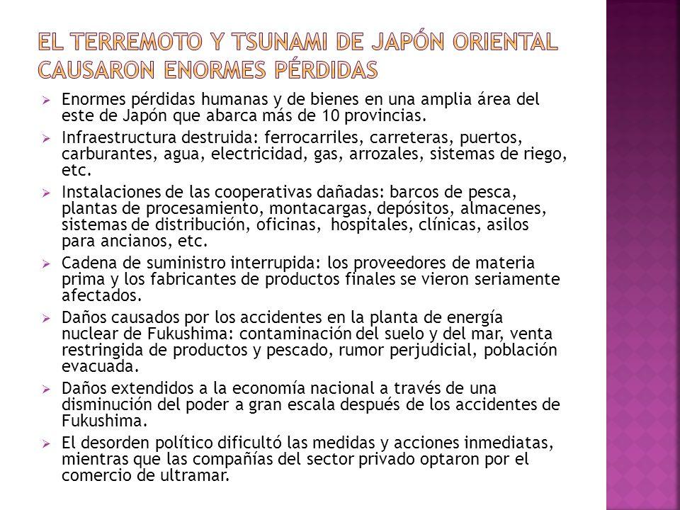 Enormes pérdidas humanas y de bienes en una amplia área del este de Japón que abarca más de 10 provincias. Infraestructura destruida: ferrocarriles, c