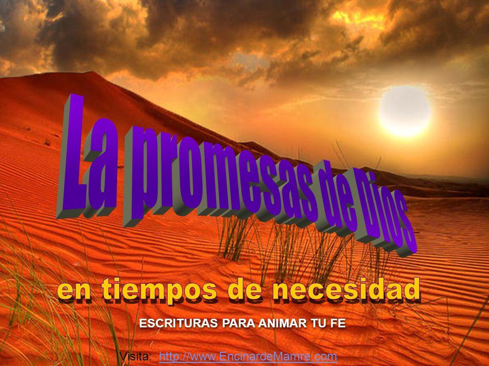 Visita: http://www.EncinardeMamre.comhttp://www.EncinardeMamre.com