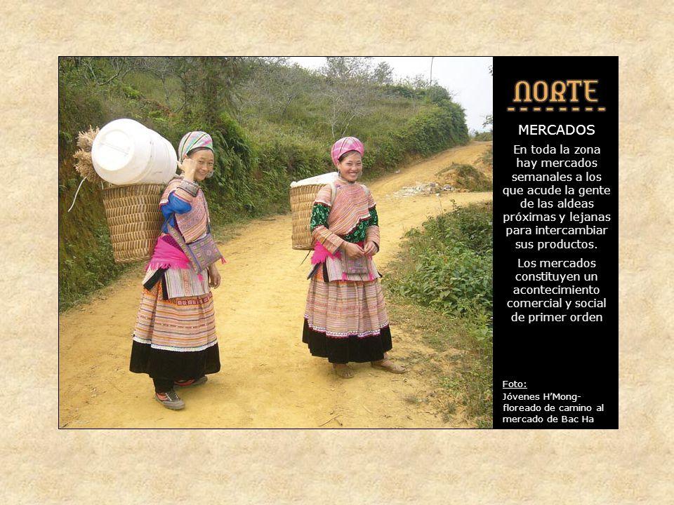 TREKINGS Todos los trekings visitan aldeas de las distintas tribus, donde se incluyen las comidas.
