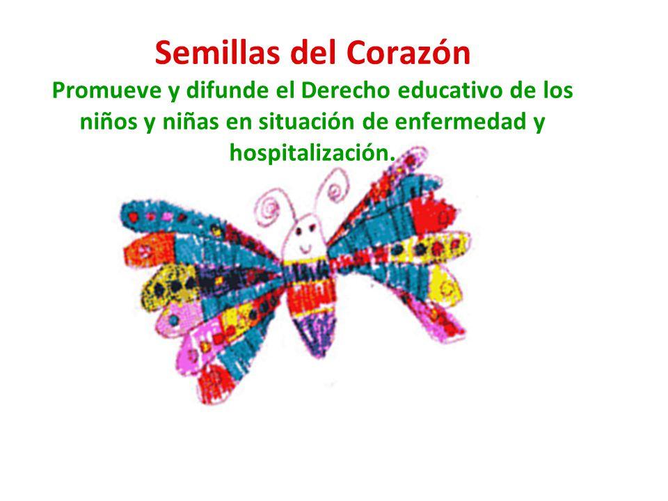 Semillas del Corazón Promueve y difunde el Derecho educativo de los niños y niñas en situación de enfermedad y hospitalización.
