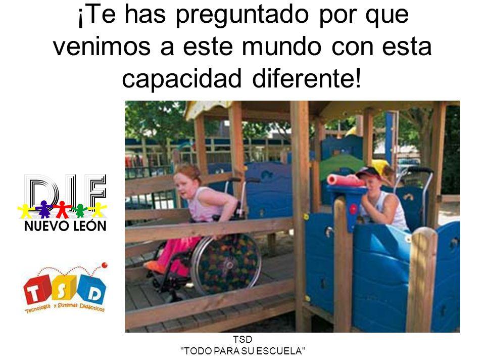TSD TODO PARA SU ESCUELA 1 ER PICADIF PARQUE INFANTIL PARA CAPACIDADES DIFERENTES