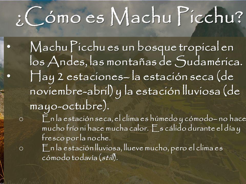 ¿Cómo es Machu Picchu? Machu Picchu es un bosque tropical en los Andes, las montañas de Sudamérica. Machu Picchu es un bosque tropical en los Andes, l