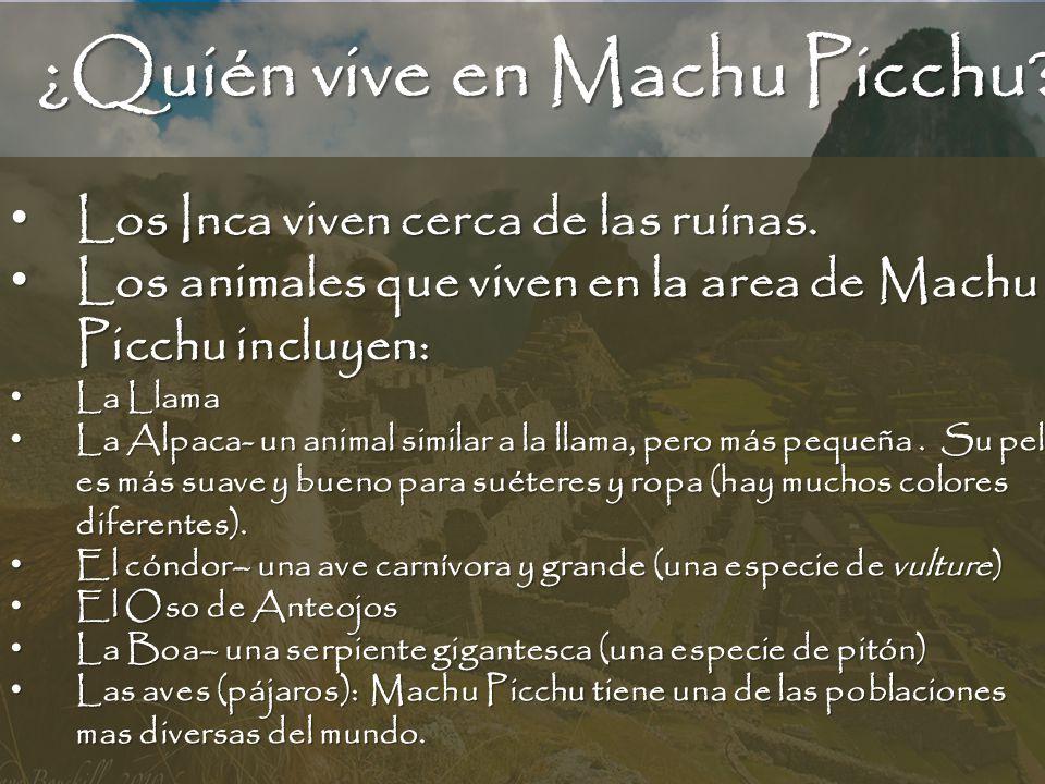 ¿Quién vive en Machu Picchu? Los Inca viven cerca de las ruínas. Los Inca viven cerca de las ruínas. Los animales que viven en la area de Machu Picchu