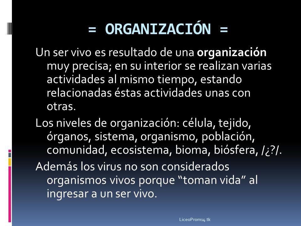 = ORGANIZACIÓN = Un ser vivo es resultado de una organización muy precisa; en su interior se realizan varias actividades al mismo tiempo, estando rela