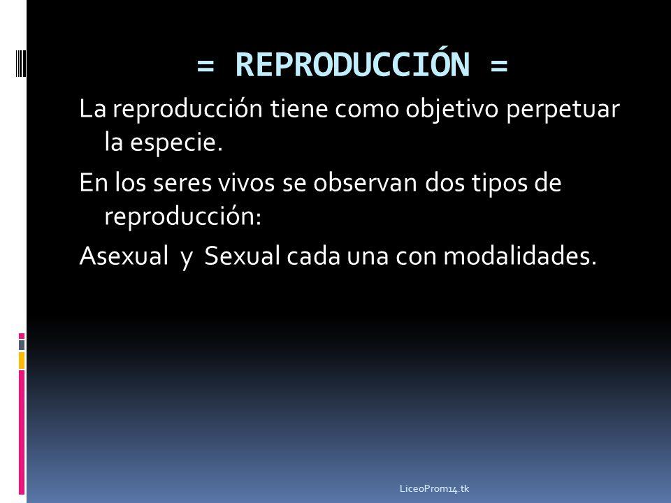 = REPRODUCCIÓN = La reproducción tiene como objetivo perpetuar la especie. En los seres vivos se observan dos tipos de reproducción: Asexual y Sexual
