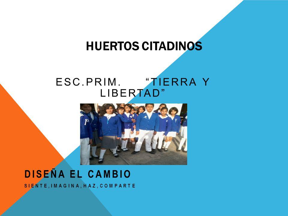 HUERTOS CITADINOS ESC.PRIM. TIERRA Y LIBERTAD DISEÑA EL CAMBIO SIENTE,IMAGINA,HAZ,COMPARTE