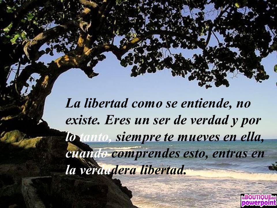 La libertad como se entiende, no existe.