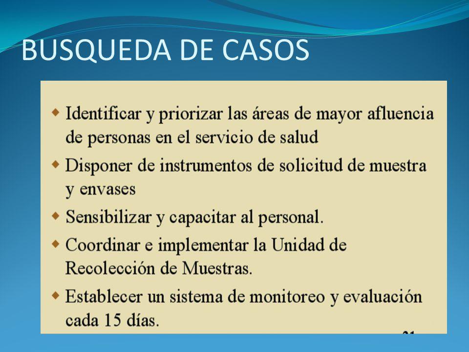 BUSQUEDA DE CASOS