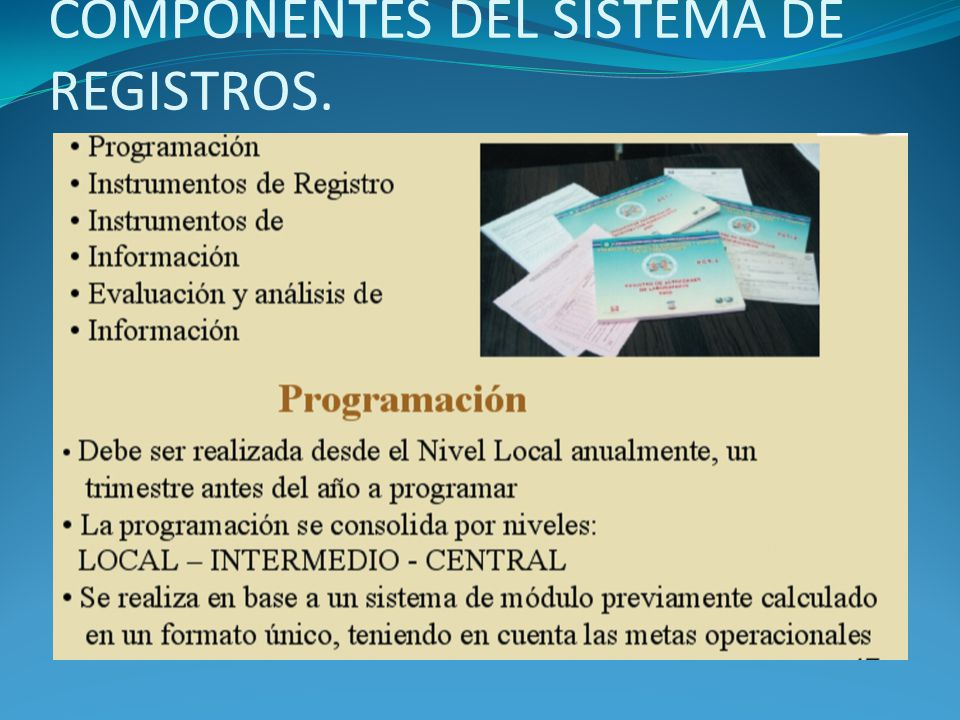 COMPONENTES DEL SISTEMA DE REGISTROS.