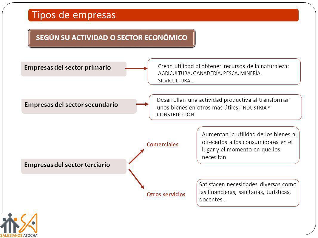 Empresas del sector primario Empresas del sector secundario Empresas del sector terciario Desarrollan una actividad productiva al transformar unos bie