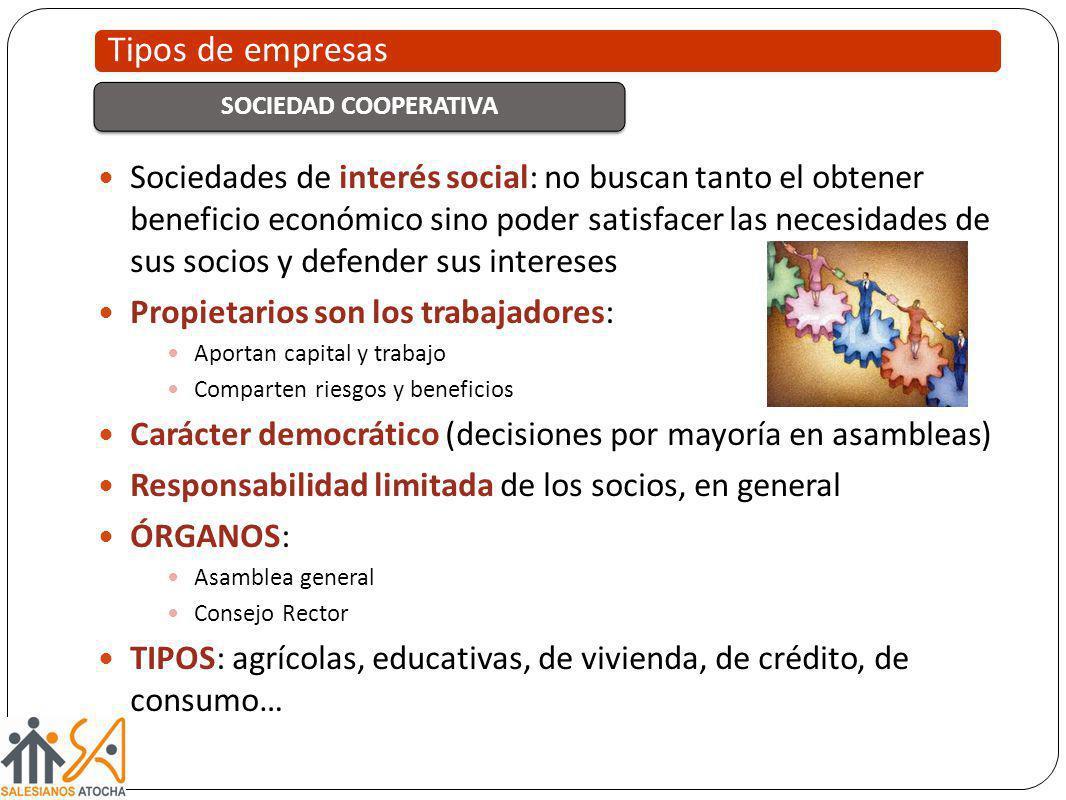 Sociedades de interés social: no buscan tanto el obtener beneficio económico sino poder satisfacer las necesidades de sus socios y defender sus intere