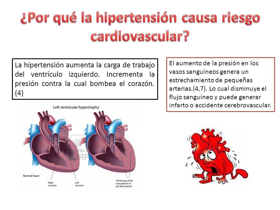 La hipertensión aumenta la carga de trabajo del ventrículo izquierdo. Incrementa la presión contra la cual bombea el corazón. (4) El aumento de la pre