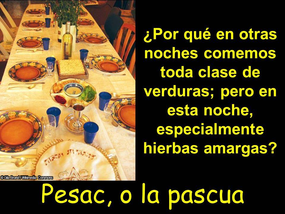 Pesac, o la pascua ¿Por qué en otras noches comemos toda clase de verduras; pero en esta noche, especialmente hierbas amargas?
