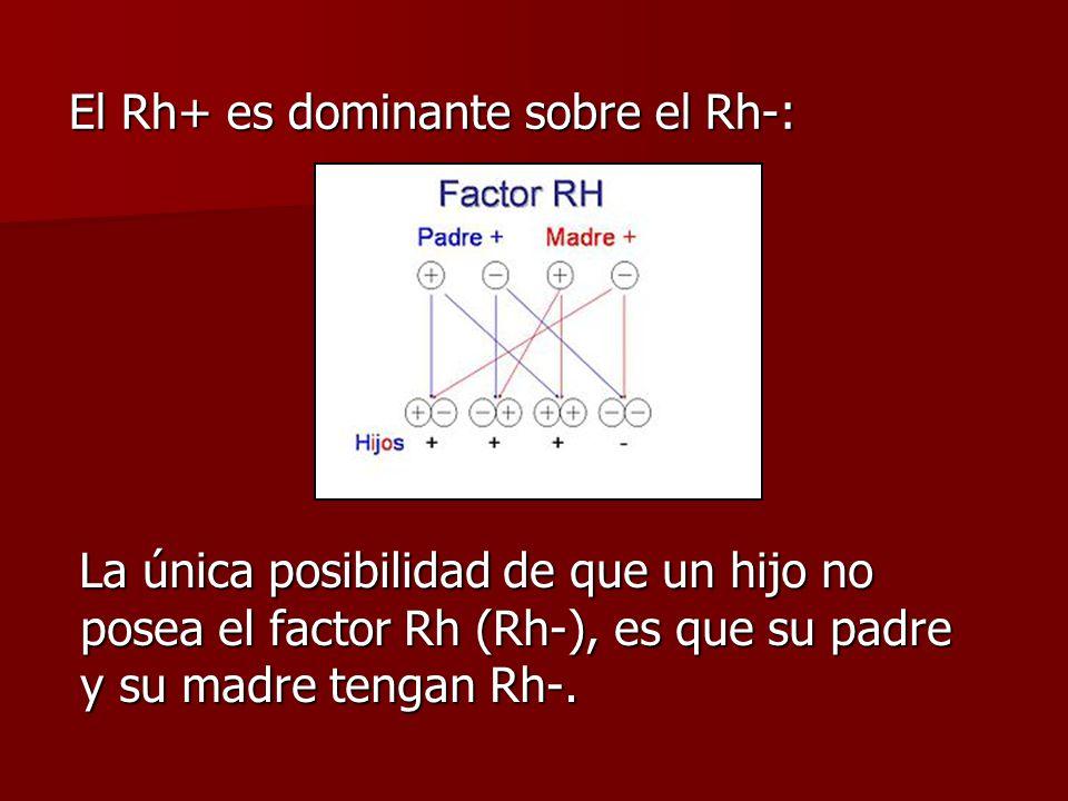 El Rh+ es dominante sobre el Rh-: El Rh+ es dominante sobre el Rh-: La única posibilidad de que un hijo no posea el factor Rh (Rh-), es que su padre y