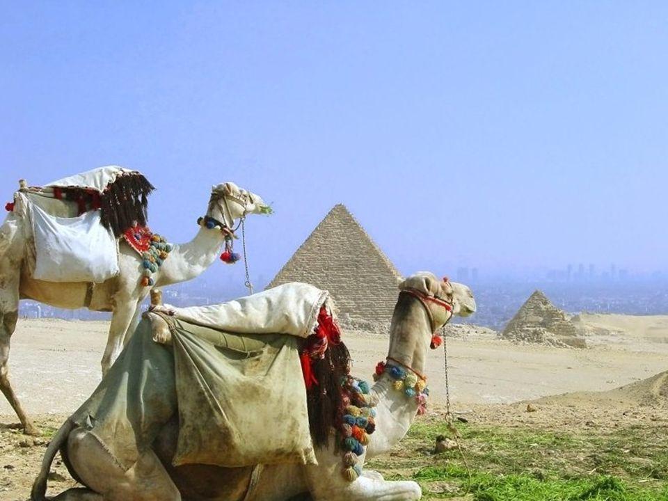 Por aquel entonces la civilización egipcia resplandecía en el apogeo de su gloria.