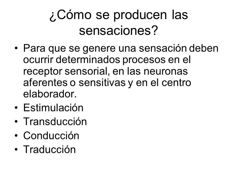 ¿Cómo se producen las sensaciones? Para que se genere una sensación deben ocurrir determinados procesos en el receptor sensorial, en las neuronas afer