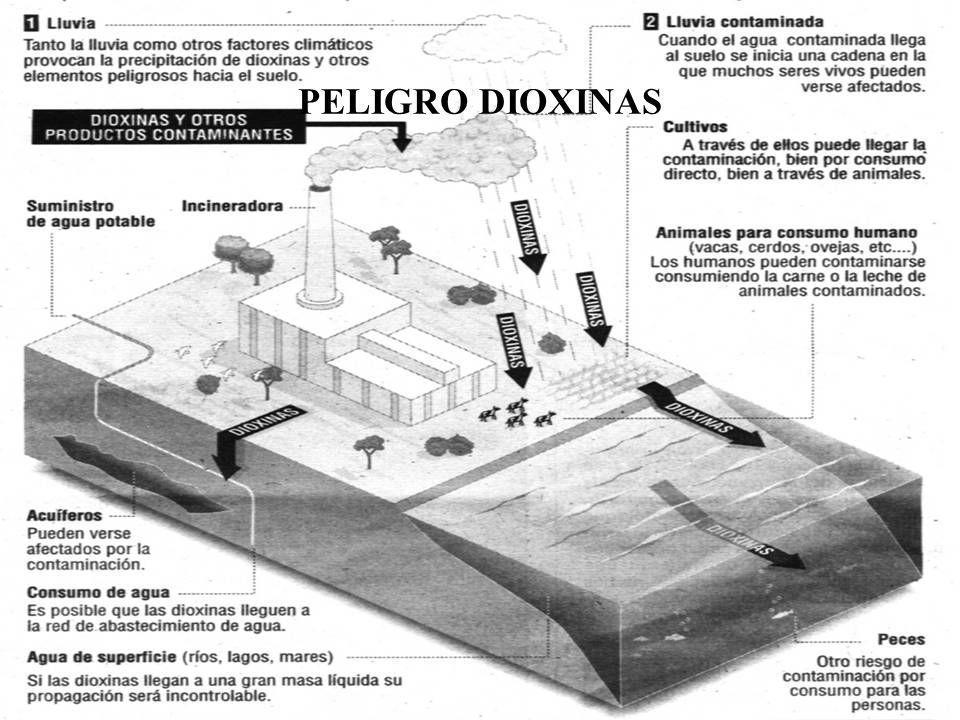 PELIGRO DIOXINAS
