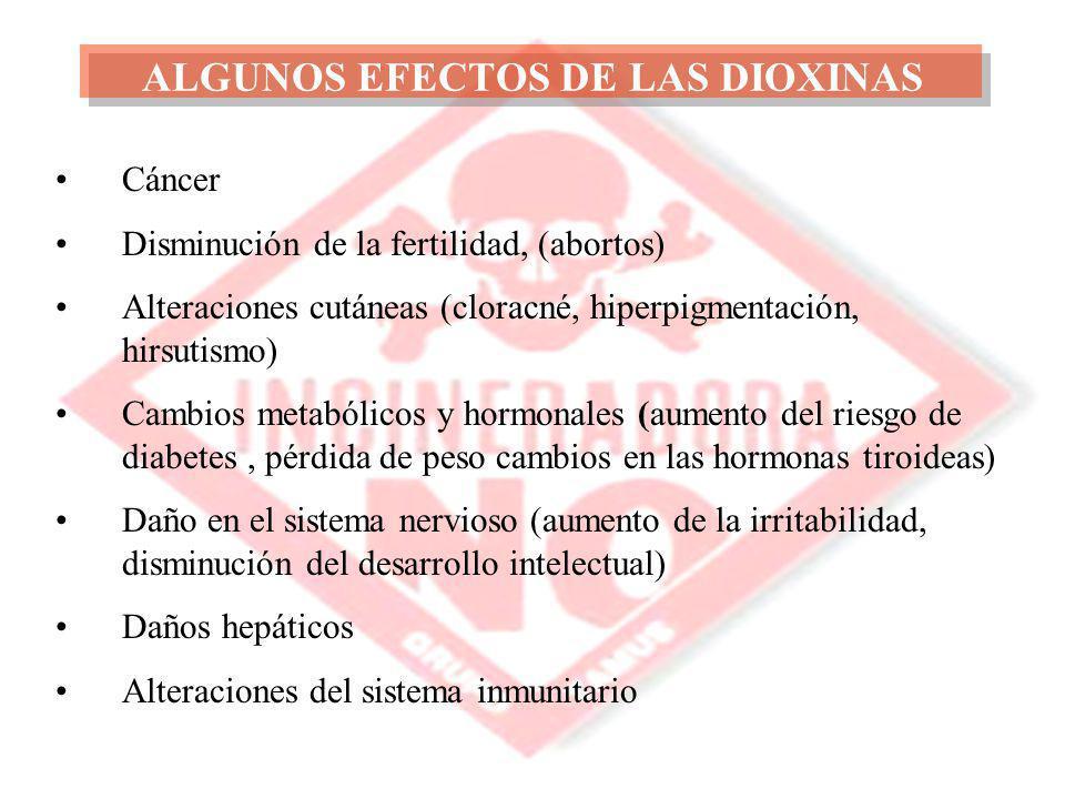 ALGUNOS EFECTOS DE LAS DIOXINAS Cáncer Disminución de la fertilidad, (abortos) Alteraciones cutáneas (cloracné, hiperpigmentación, hirsutismo) Cambios