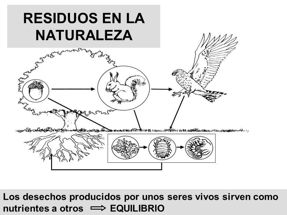 RESIDUOS EN LA NATURALEZA Los desechos producidos por unos seres vivos sirven como nutrientes a otros EQUILIBRIO