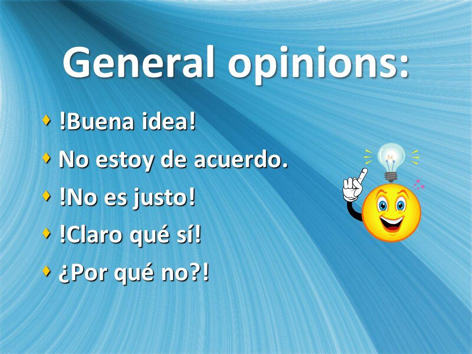 General opinions: !Buena idea. !Buena idea. No estoy de acuerdo.