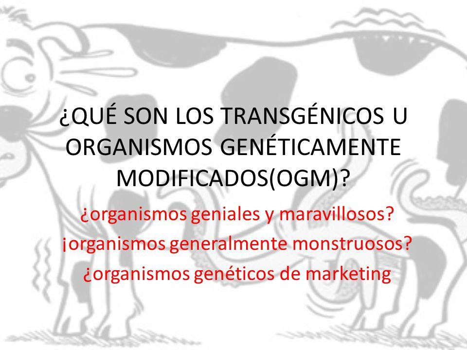 ¿QUÉ SON LOS TRANSGÉNICOS U ORGANISMOS GENÉTICAMENTE MODIFICADOS(OGM)? ¿organismos geniales y maravillosos? ¡organismos generalmente monstruosos? ¿org