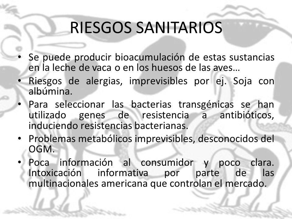 RIESGOS SANITARIOS Se puede producir bioacumulación de estas sustancias en la leche de vaca o en los huesos de las aves… Riesgos de alergias, imprevis
