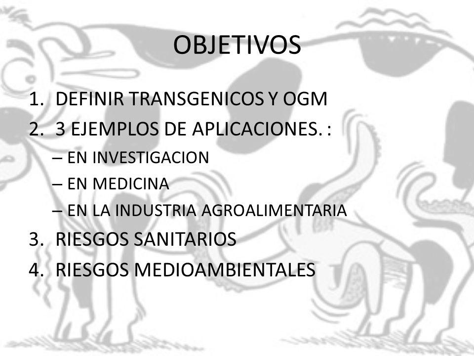 OBJETIVOS 1.DEFINIR TRANSGENICOS Y OGM 2.3 EJEMPLOS DE APLICACIONES. : – EN INVESTIGACION – EN MEDICINA – EN LA INDUSTRIA AGROALIMENTARIA 3.RIESGOS SA