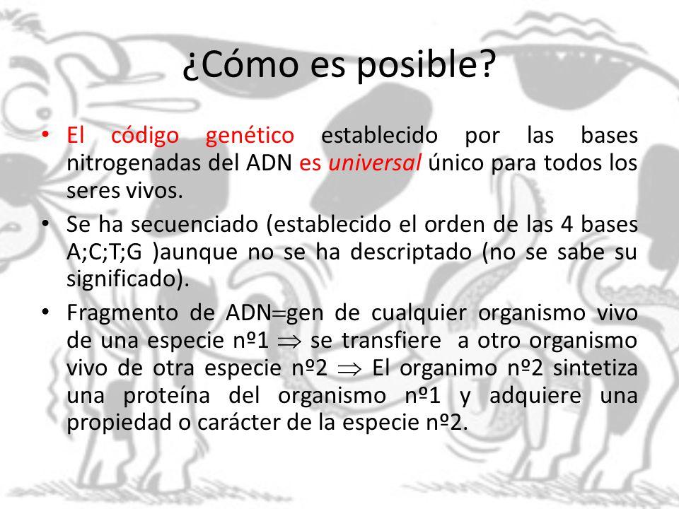 APLICACIONES :1- LA INVESTIGACIÓN CIENTÍFICA Su objetivo es comprender el metabolismo celular, el funcionamiento molecular.