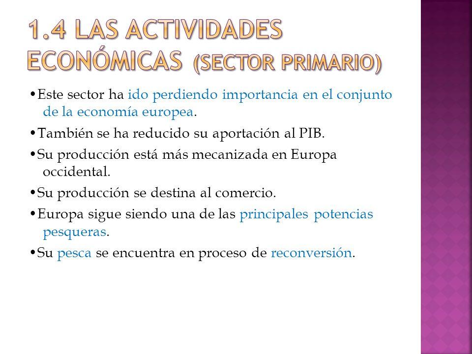 Este sector ha ido perdiendo importancia en el conjunto de la economía europea.